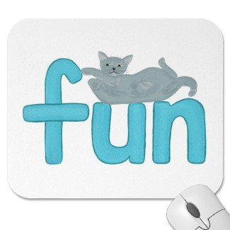 Cats love fun